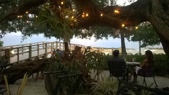 Mar Vista Dockside Restaurant And Pub Under The Trees Dining