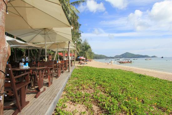 Palm Leaf Resort: Blick Richtung Sairee