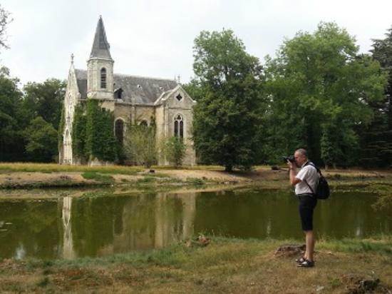 picture of chateau de la ferte saint aubin la ferte saint aubin tripadvisor. Black Bedroom Furniture Sets. Home Design Ideas