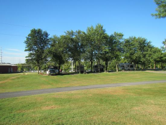Candy Hill Campground: campsites