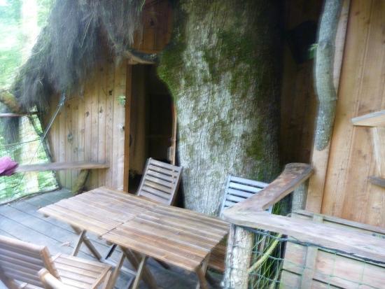 l 39 arbre a cabane guyonvelle arvostelut sek hintavertailu tripadvisor. Black Bedroom Furniture Sets. Home Design Ideas