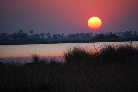 Wilderness Safaris DumaTau Camp Picture