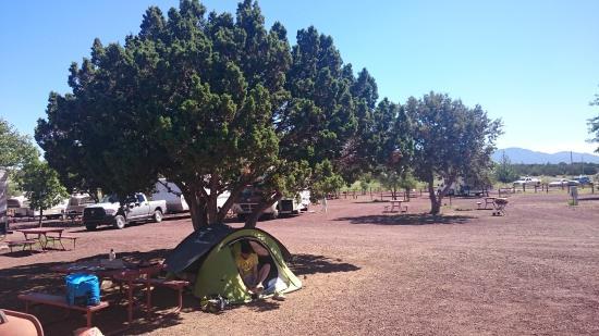 Grand Canyon / Williams KOA: Tent site