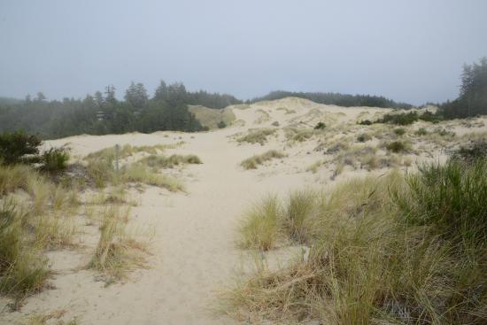 John Dellenback Dunes Trail : Dunes-03