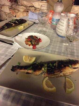 Trin Dalmazia: Location essenziale ma incantevole, cucina gustosa, genuina e abbondante. Servizio rapido e atte