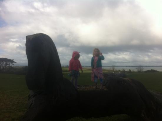 Manurewa, Новая Зеландия: Horse head jump