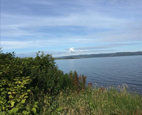 Kilfinan View Bed & Breakfast : Views from Kilfinan View and by Loch Fyne.