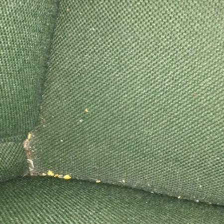 Monticello Motel: Crumbs in the office chair. Clearly the room was not swept