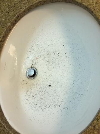 Country Inn & Suites by Radisson, Dallas-Love Field (Medical Center), TX : This is the sink!