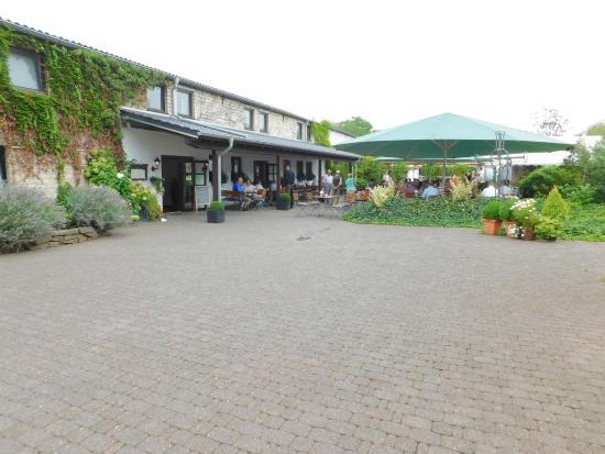 Restaurant Hallerhof: Hallerhof-Terrasse