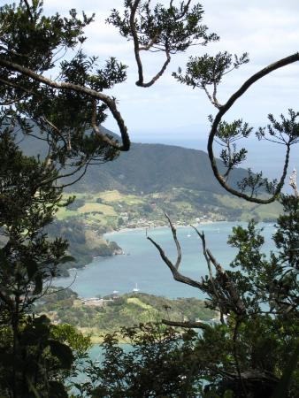 Little Earth Lodge: View from Mt Mania, Whangarei Heads
