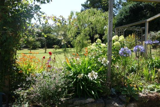 The Old School House - Studland: beautiful garden at The Old School House
