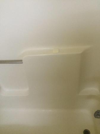 Quality Inn: Soap in shower