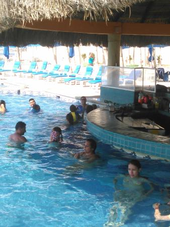 Posada Real Los Cabos: Swim up bar complete with kids diving off stools and the inside of diapers floating in hot water