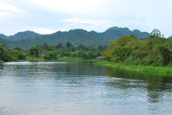 Naujan Lake National Park: Vista of 1 of 2 islands (Mag-asawang Pulo) on the Northern part of Naujan Lake
