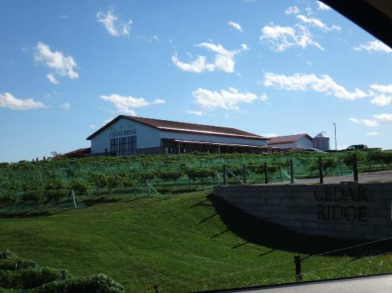 Vines Views Picture Of Cedar Ridge Winery Distillery