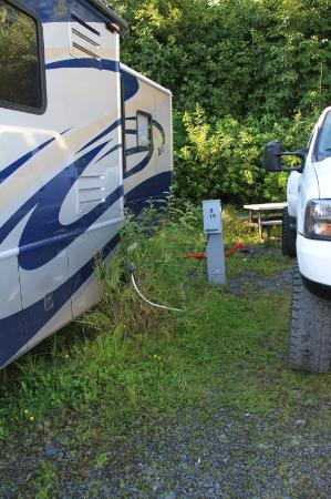 Stoney Creek RV Park : Our fairly tight, poorly maintained site (D19)