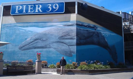 Outside Aquarium Of The Bay Picture Of Pier 39 San