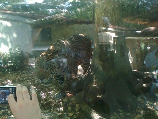 Picture Of Giardino Zoologico Di Pistoia Pistoia