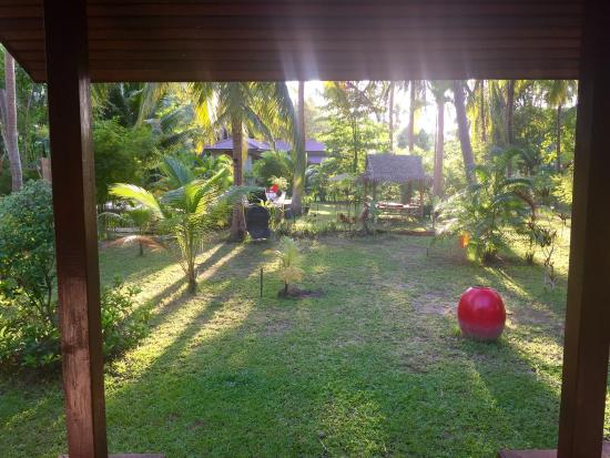 Coconut Lane Villas : Villa chamade (numéro 1)  Jardin et piscine