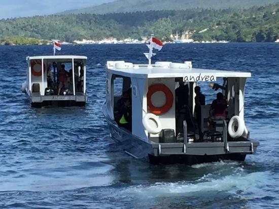Lembeh Resort: Bateau de plongée