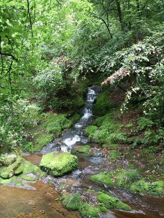 Taebaek, South Korea: 검룡소 계곡