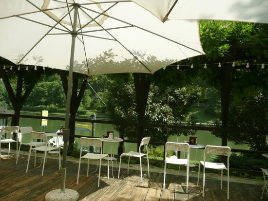 Terrazza sul fiume Po - Foto di Caffè del Borgo Medievale, Torino ...