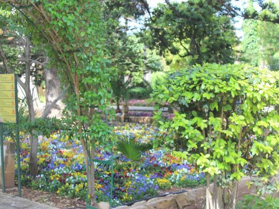 San Anton Gardens: Здесь очень красивые клумбы.