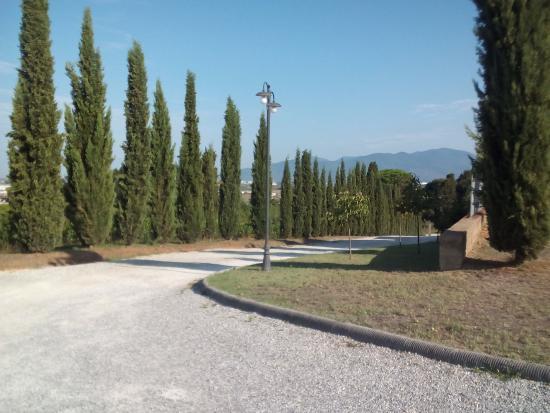 Hotel Casale Le Torri: Vialetto d'accesso