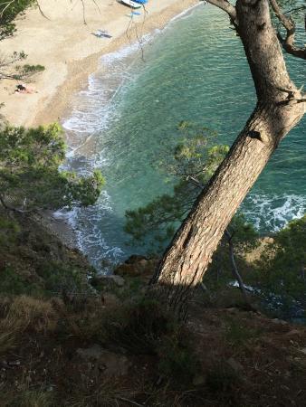 Hostal Sa Tuna: Vista de la cala Sa Tuna desde el sendero junto al hotel que sube a la montaña