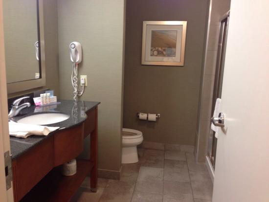 Hampton Inn & Suites by Hilton Brantford, Ontario: One bed room (suite?) with pullout