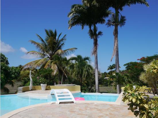 La Metisse : Vue de la piscine