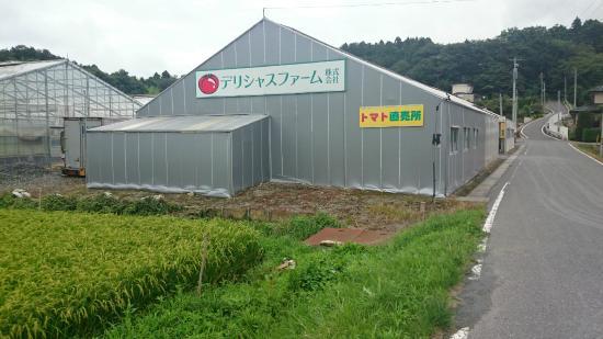 Delicious Tomato Farm Cafe