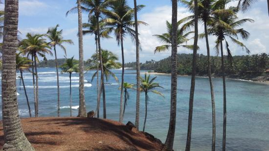 Sunray Resort Mirissa : vue de la plage
