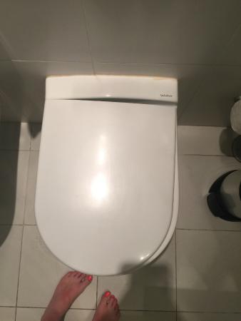 Miraculous Toilet Seat Hanging Off Picture Of Vincci Tenerife Golf Evergreenethics Interior Chair Design Evergreenethicsorg