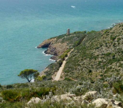Ruta La Vía Verde - Picture of The Via Verde Green Route, Benicasim - TripAdv...