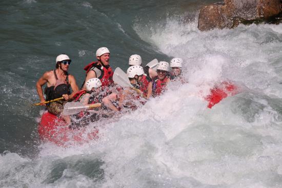 Apex Raft Company : Whoa!