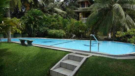 Leijay Resort: Piscine