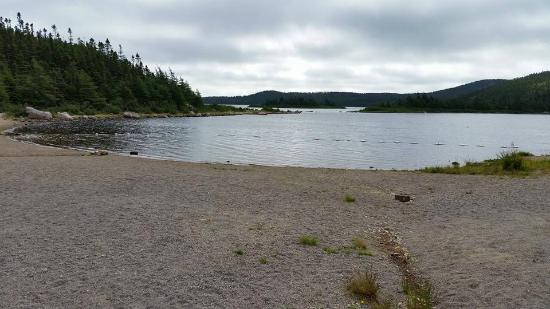 Holyrood, Canadá: Campground Swimming Area