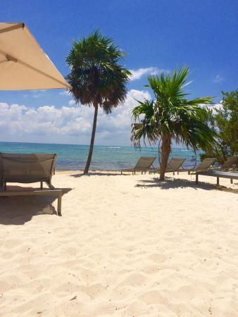 Beach - Paradisus By Melia Playa del Carmen La Perla Photo