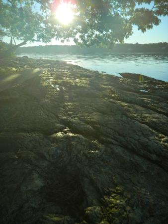 Recompence Shore Campground at Wolfe's Neck Farm: Sunrise views of Casco Bay from the shore at Recompence Campgrounds
