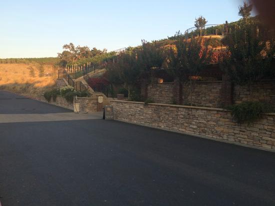 Vino Bello Resort: Nice place to take a walk