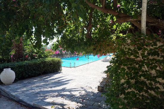 Douka Hotel Apartments : Piscine