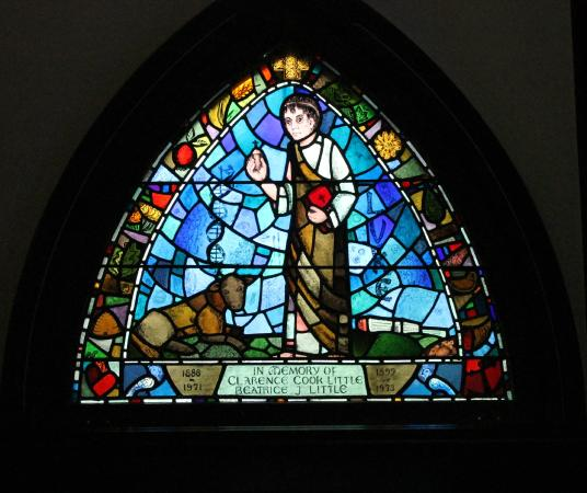St. Saviour's Church : : Saint Saviour's Church Stained Glass varied and exquisite!