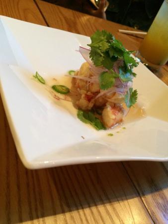 yellowtail sashimi with jalapeno - Picture of Nobu ...