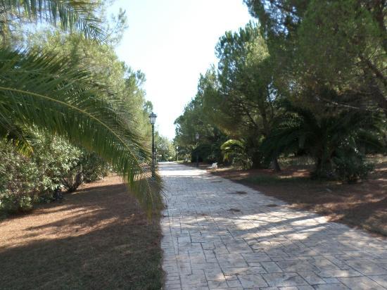 Montegrosso, Italy: Viale di ingresso