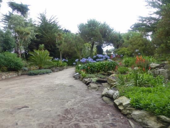 Jardin exotique de l 39 ile de batz picture of jardin for Jardin georges delaselle