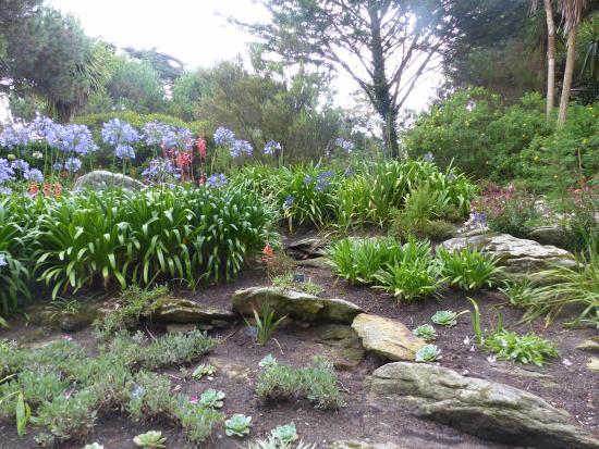 Jardin exotique de l 39 ile de batz picture of jardin for Jardin exotique