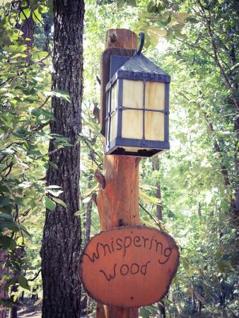 Whispering Woods Treehouse