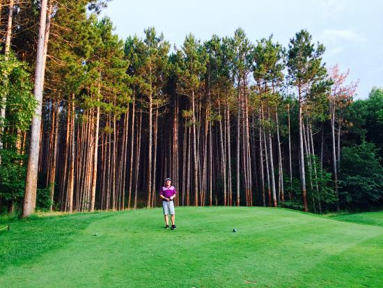 Deacon's Lodge Golf Course: Outstanding pines